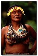 Amazonie-perou-shipivos