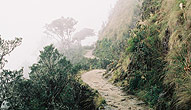 Chemin-Inca