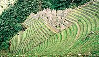 Chemin_Inca_winay