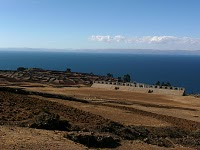 Titicaca-Cord-Royale